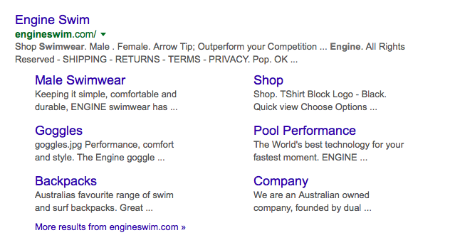 Engine Swim Big commerce Google Page 1